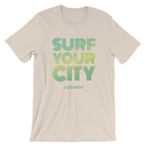 Surf Your City Surfskate School